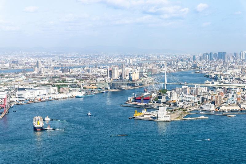 大阪湾でダイビングが楽しめる未来を目指せ! 海のリハビリプロジェクトが始動