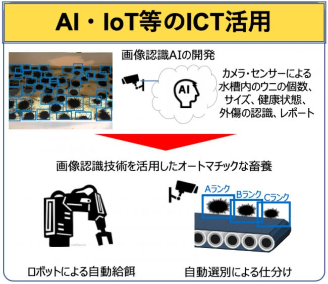 ウニノミクス社のAIロボットを用いたウニ畜養システム
