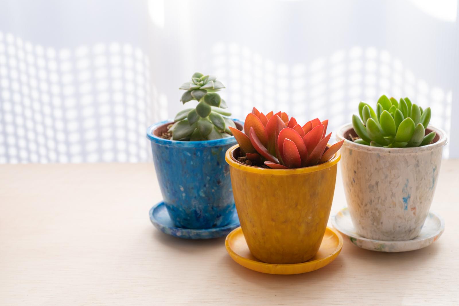 海洋プラスチックごみから生まれた植木鉢「buøy プランツポット」