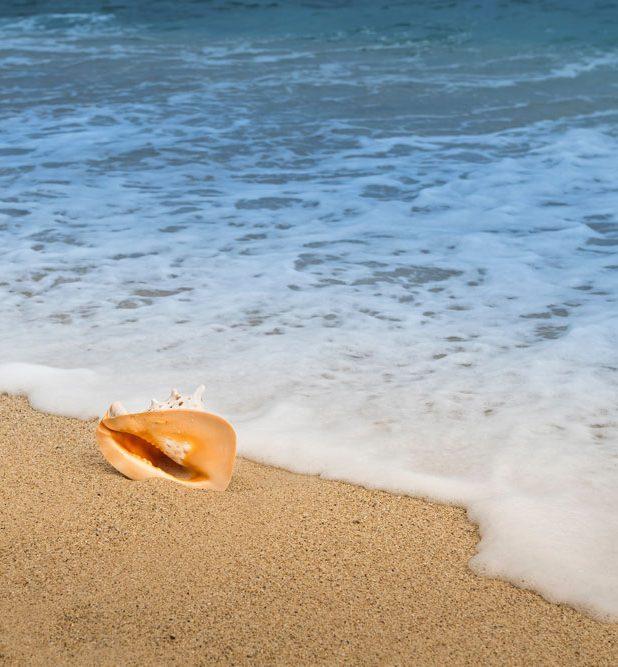【2021年5月最新版】 全国の「海開き」海水浴場まとめ