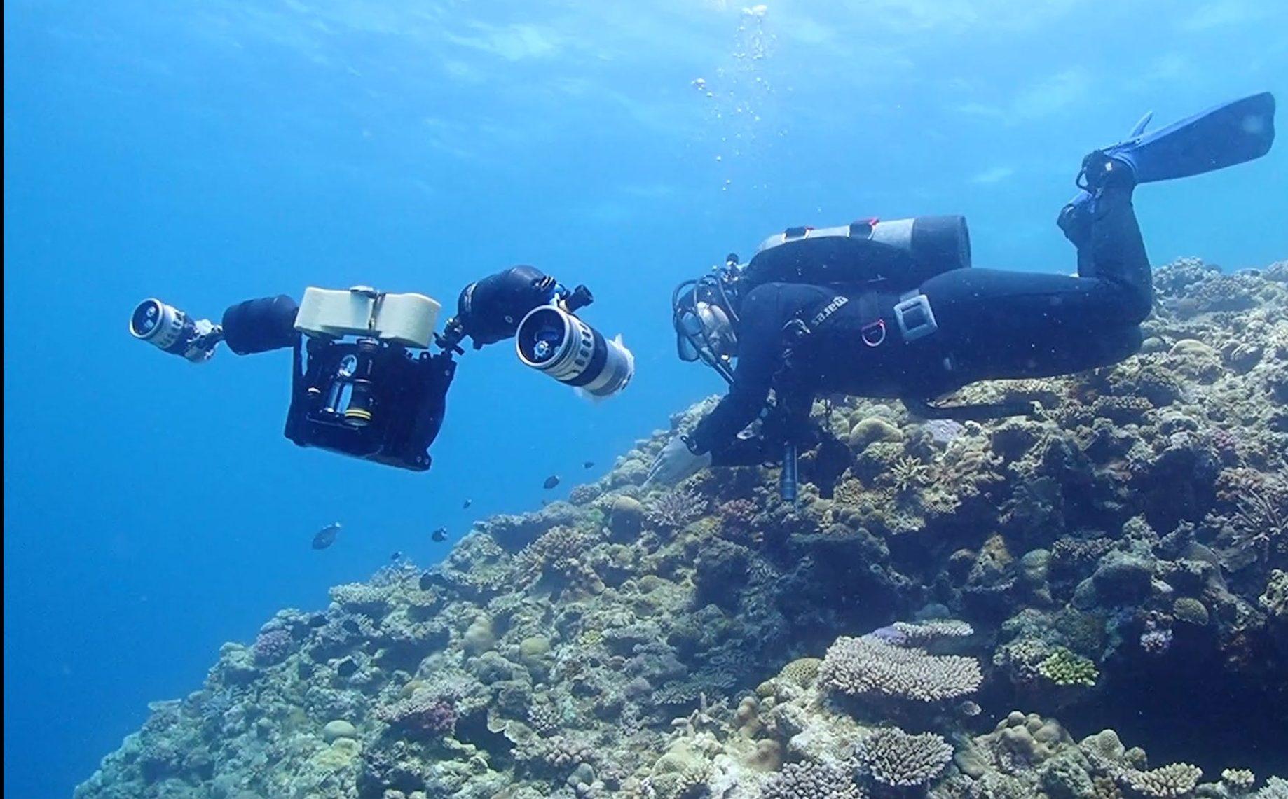 水中写真家・広部俊明さんの流されたカメラが発見された!?その真相に迫る!