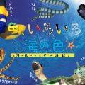 海洋写真家・吉野雄輔さん著『どうしてそうなった!? 海の生き物①』予約販売受付中
