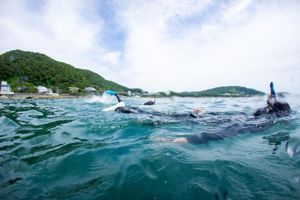静かに泳ぐトモコさん(手前の白いフィン)。 そして、その後ろのリエさん(奥の青いフィン)に注目。