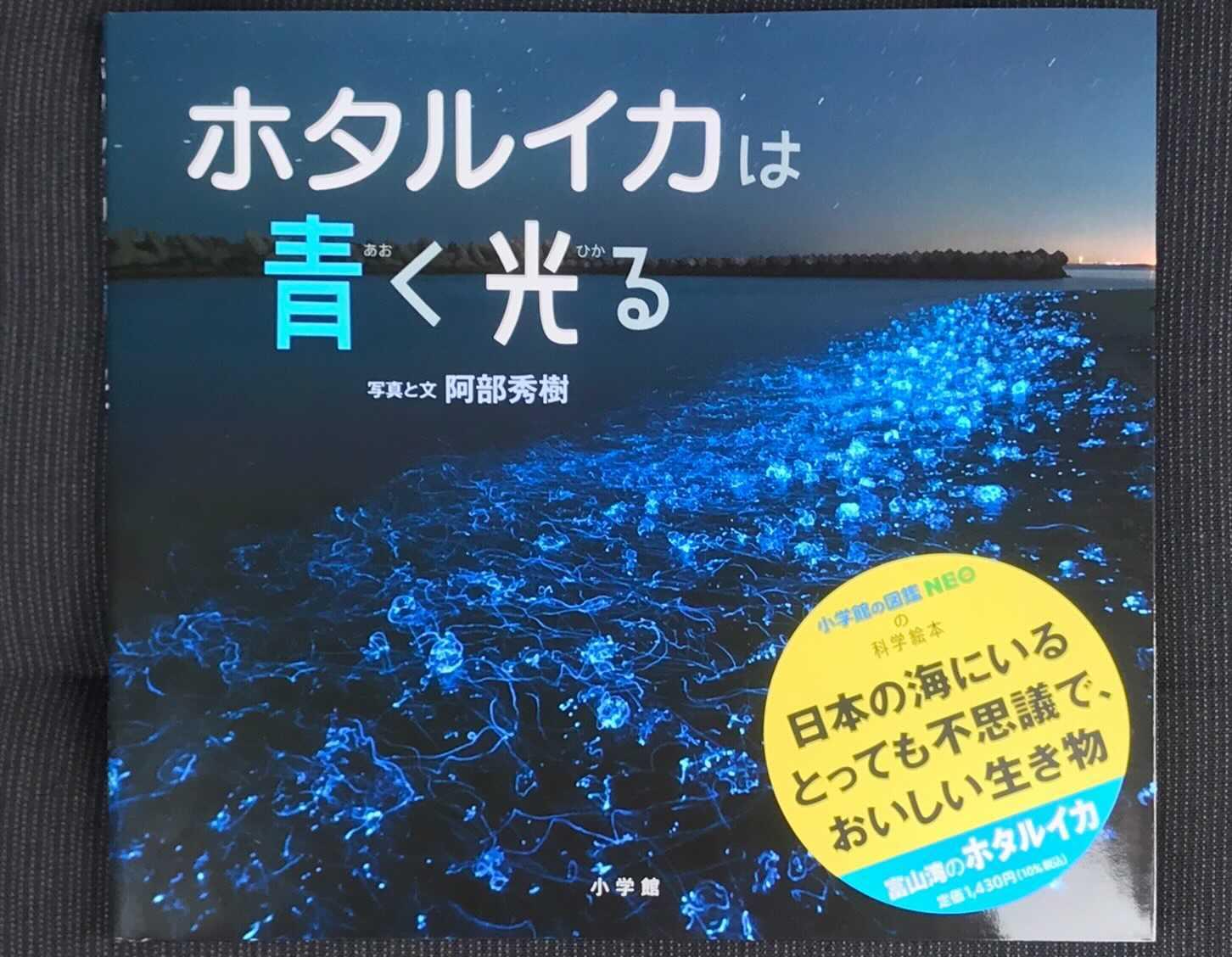 水中写真家・阿部秀樹氏が手掛けた「ホタルイカは青く光る」が7月7日に出版開始