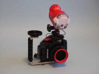 フラッシュ:UFL-3×1 カメラ:PEN Lite E-PL7 レンズ:M.ZUIKO DIGITAL 14-42mm EZ F3.5-5.6 防水プロテクター:PT-EP12 グリップ:MP/MPBK-03 アーム:MP/レンズホルダー67