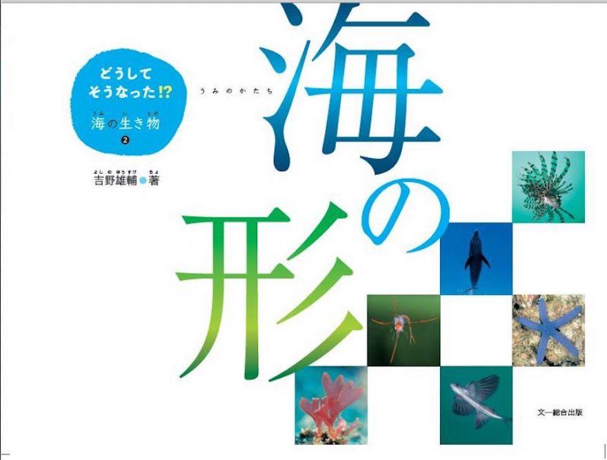 海洋写真家・吉野雄輔さん著「どうしてそうなった⁉海の生き物②」海の形