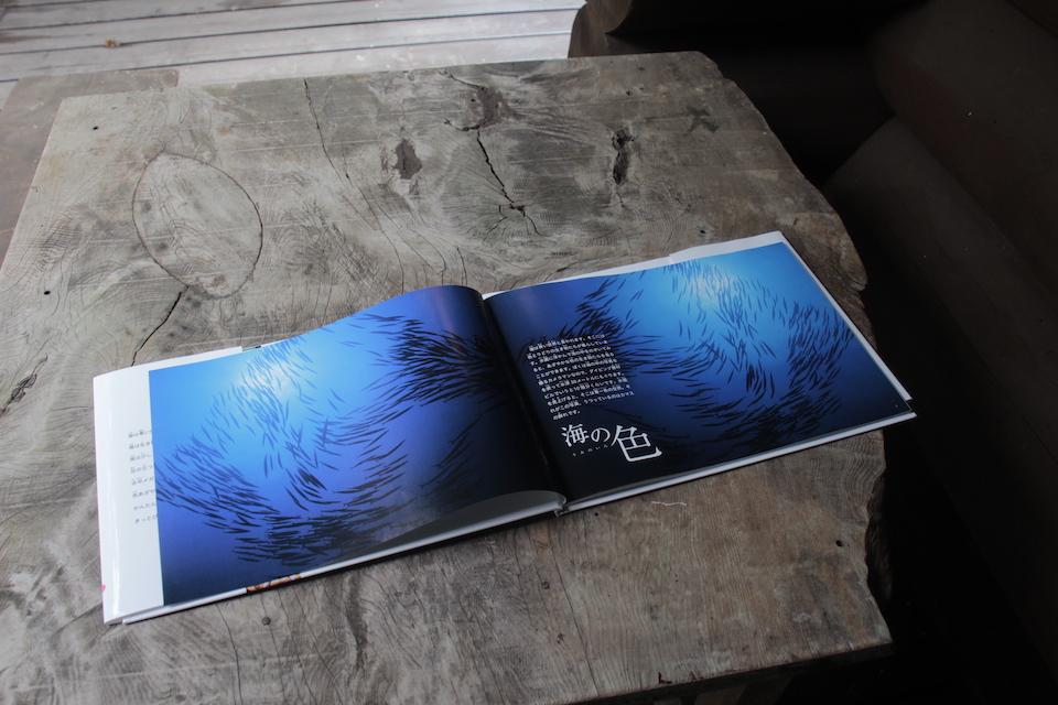 海洋写真家・吉野雄輔さん著「どうしてそうなった⁉海の生き物①」海の色