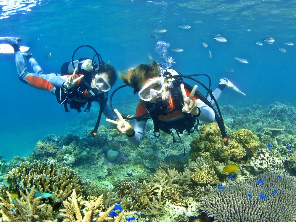 【恩納村】目の前のビーチで回遊魚にサンゴ礁。身近な自然を感じられる【SeaTrust】