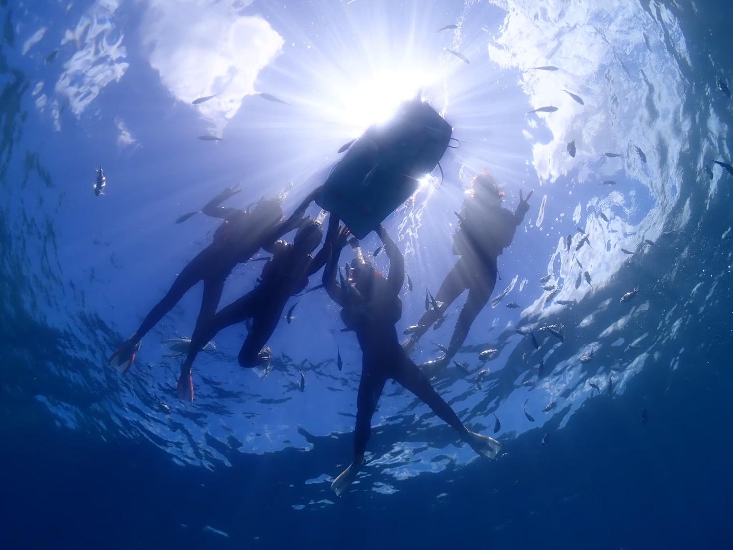 【恩納村】まだ開拓できる!? 写真家も魅了するダイビングポイント【Pro Scuba Team SEALs】