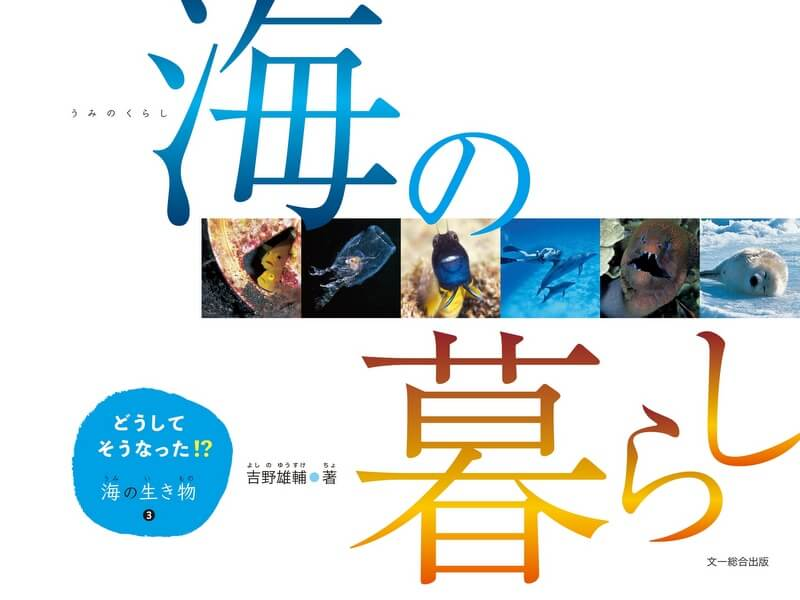『どうしてそうなった!? 』シリーズ3部作目、「海の暮らし」がいよいよ発売!