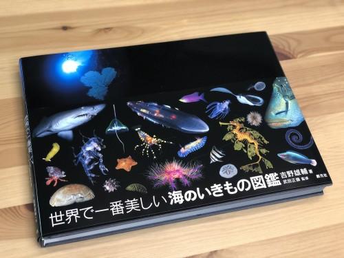 世界で一番美しい海の生き物図鑑